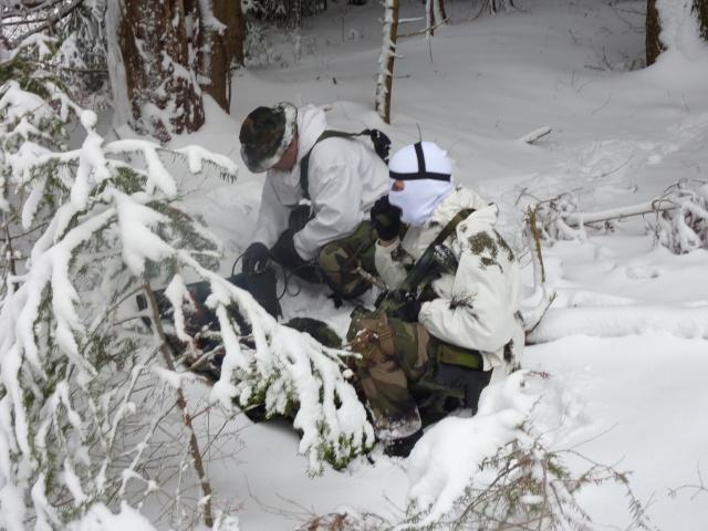 12/2012, dans la neige, forêt + urbain P1020411