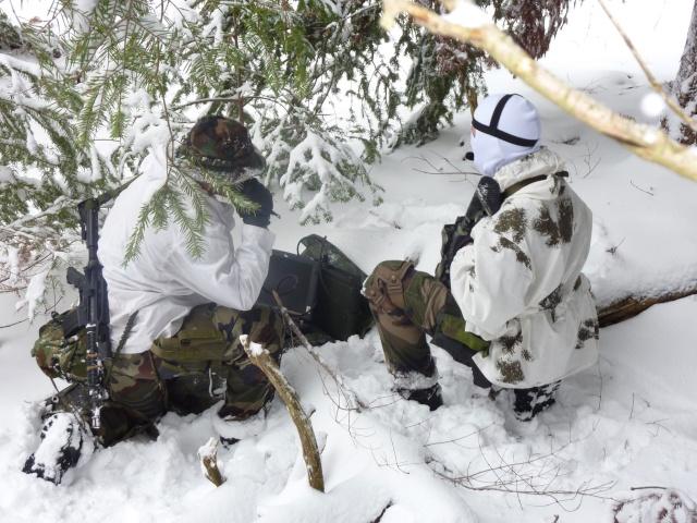12/2012, dans la neige, forêt + urbain P1020413