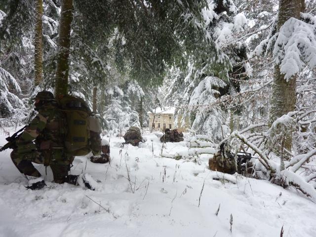 12/2012, dans la neige, forêt + urbain P1020414
