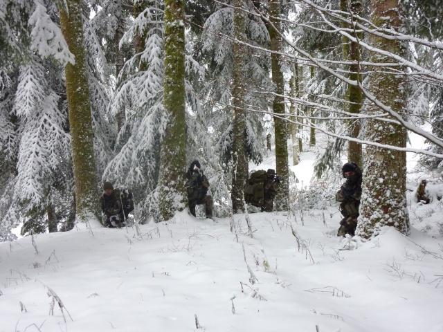 12/2012, dans la neige, forêt + urbain P1020415