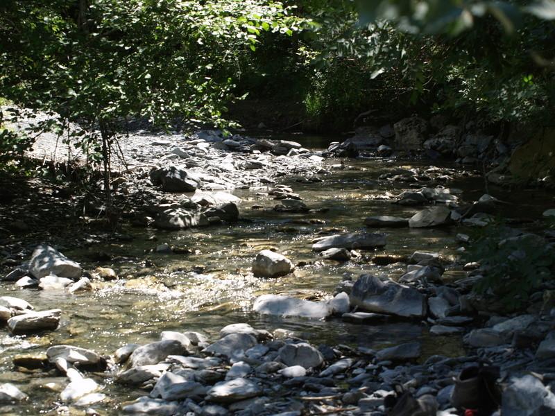 Vallée du Sasse - La Basse Combe (04) II P1010022