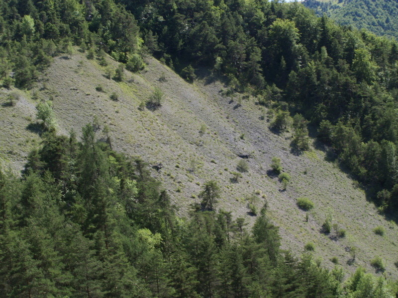 Vallée du Sasse - La Basse Combe (04) II P1010124
