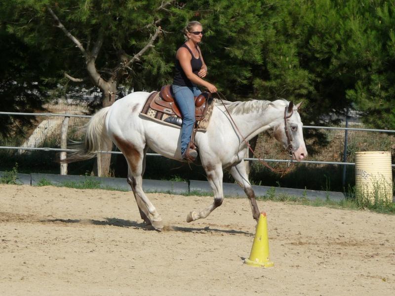 """Centre equestre western """"LA PALOUSE"""" st Cyprien Fin_2020"""