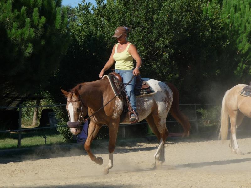 """Centre equestre western """"LA PALOUSE"""" st Cyprien Photos11"""