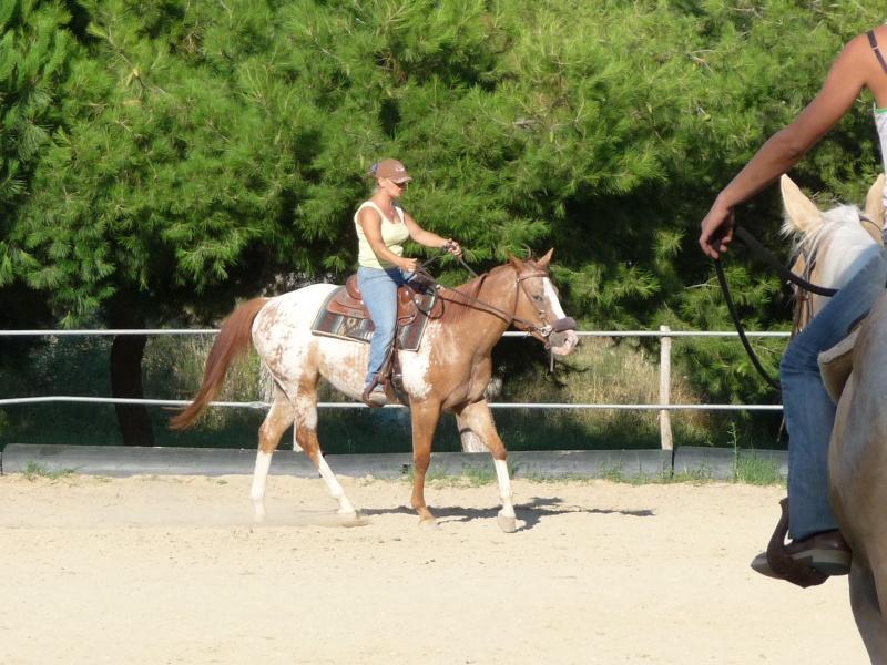 """Centre equestre western """"LA PALOUSE"""" st Cyprien Photos12"""