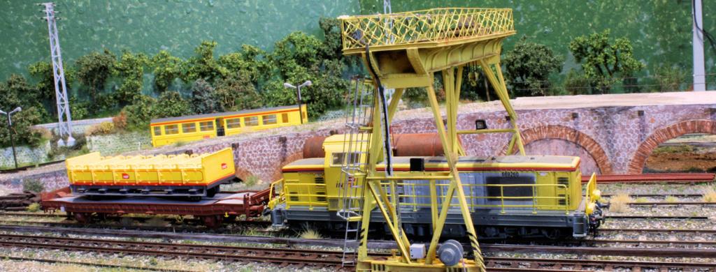 Tren groc à VVB - Page 13 Dzopar11