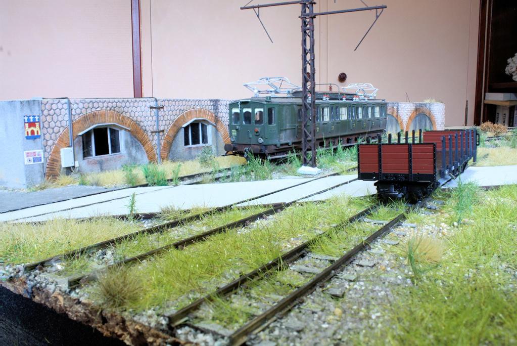 Tren groc à VVB - Page 13 Touffe10
