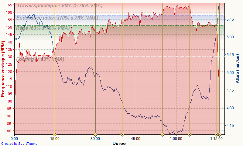 "bladerunner ---) marathon de Nantes 3h06'36"" : objectif atteint - Page 2 Course10"