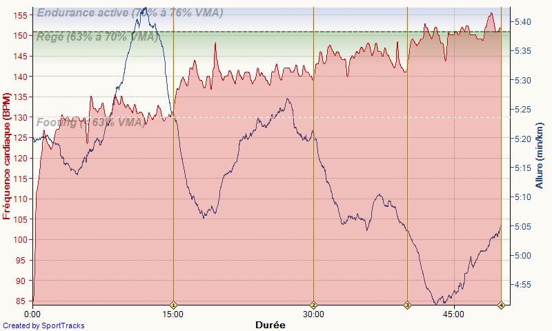 "bladerunner ---) marathon de Nantes 3h06'36"" : objectif atteint - Page 2 Course11"