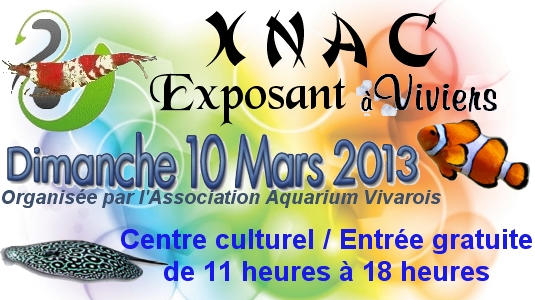 Bourse de Viviers (07) le dimanche 10 mars 2013 Bourse10