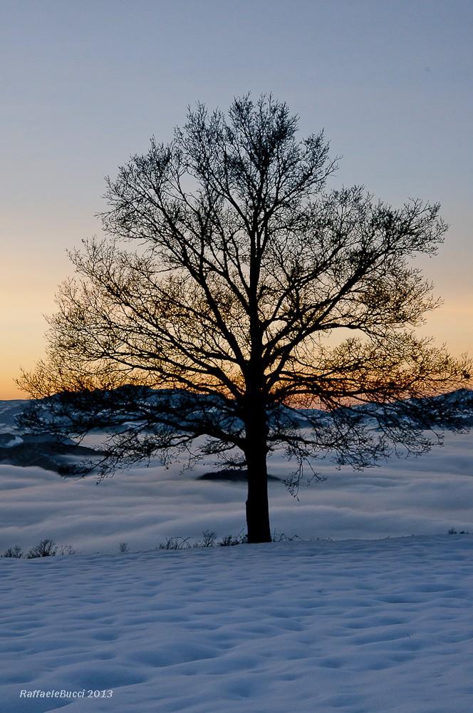 Tramonto su neve e nuvole + NUOVE Ff_rr-10