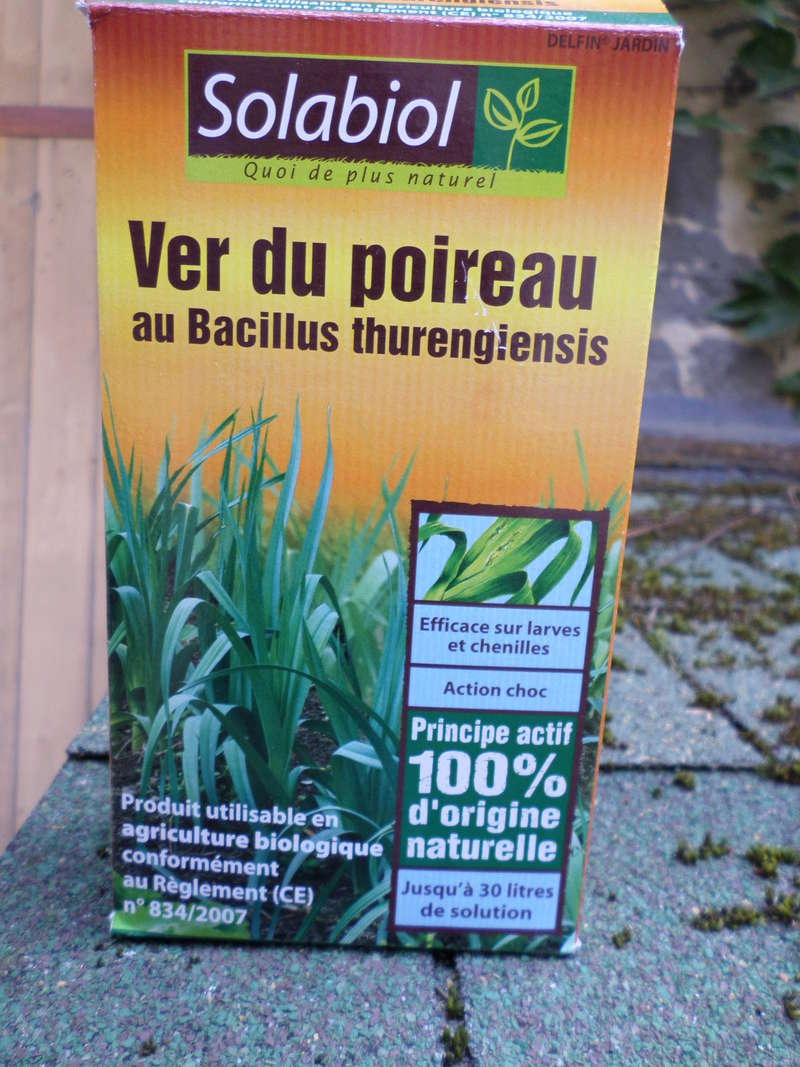 Le jardin des plantes de Rouen attaqué par un papillon ravageur Sam_1812