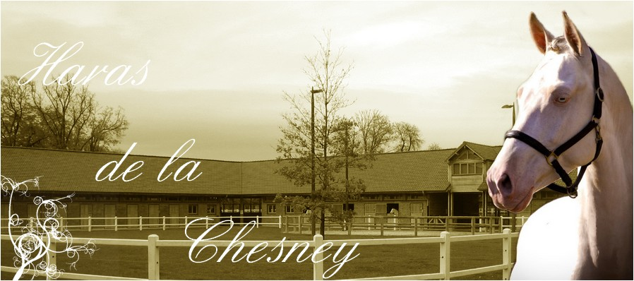 Haras de la Chesney