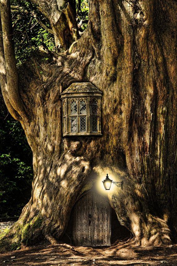 bonzour bonne zournée et bonne nuit notre ti nid za nous - Page 37 D4690110