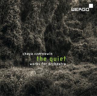 Sorties CD en musique du XXIè siècle Wer73110