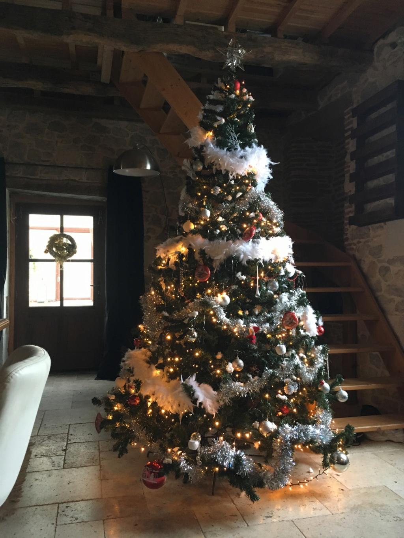 Vos décorations de Noël... Img_2111