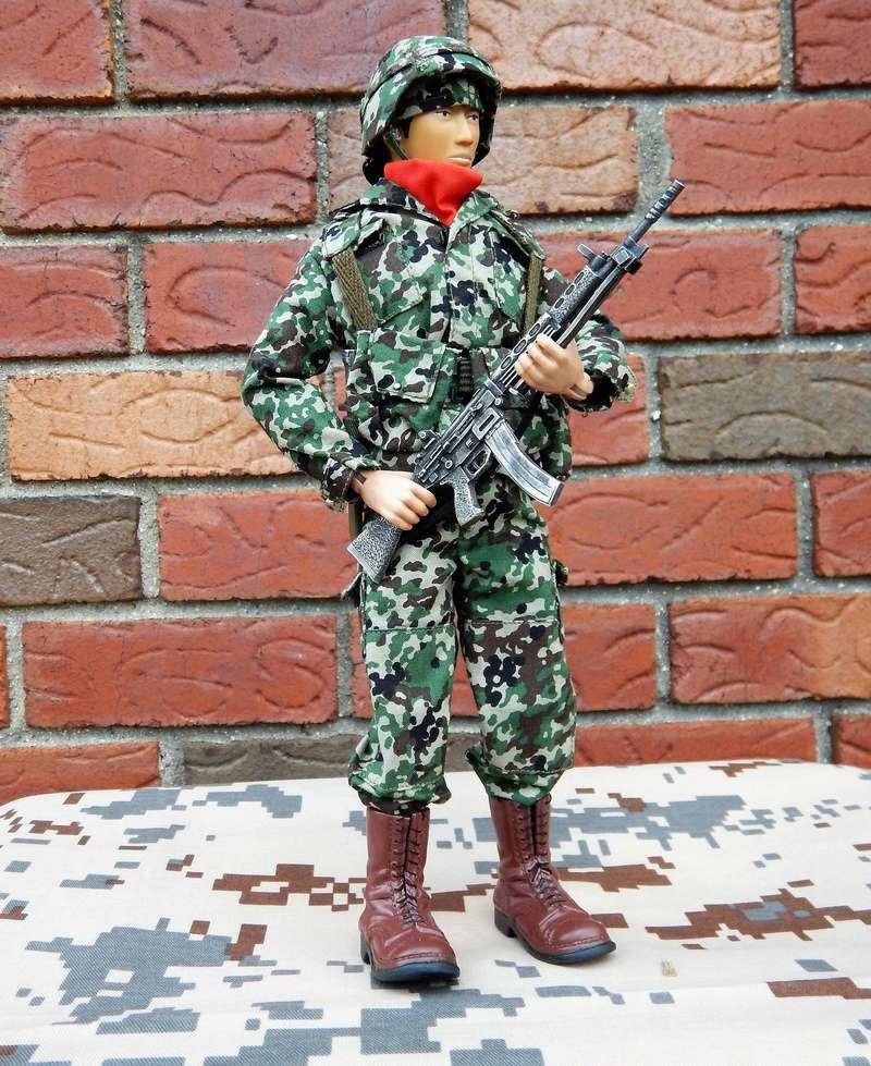 JGSDF action figure. Dscn6315