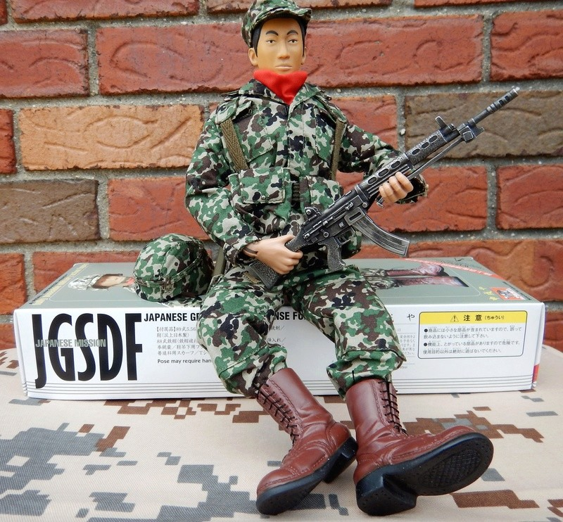 JGSDF action figure. Dscn6317