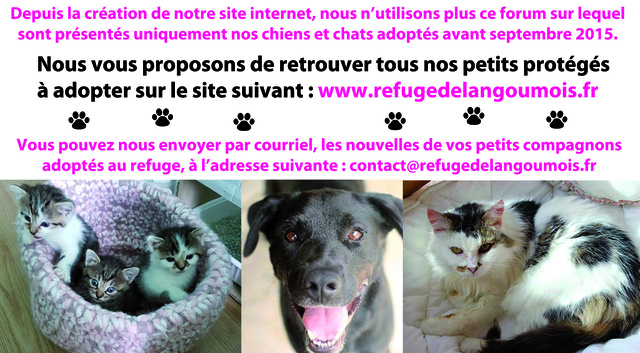 Contact - REFUGE de l'ANGOUMOIS - SPA de MORNAC en Charente.   SITE INTERNET OFFICIEL Bandea10