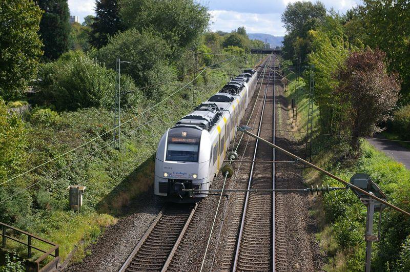 Was die Züge so bewegt ... - Seite 7 Imgp3312