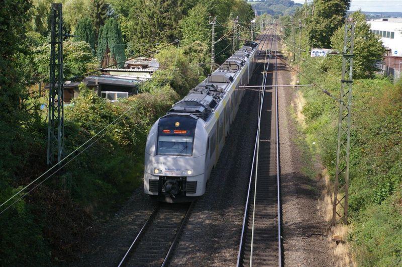Was die Züge so bewegt ... - Seite 7 Imgp3314