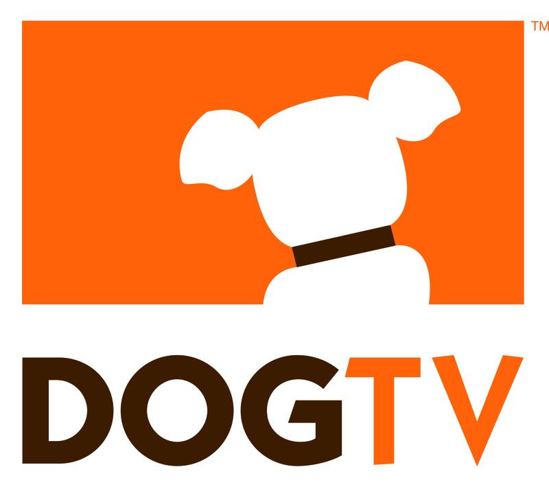 SKY anuncia distribuição do canal Dog TV que será comercializado à la carte Dogtv_10