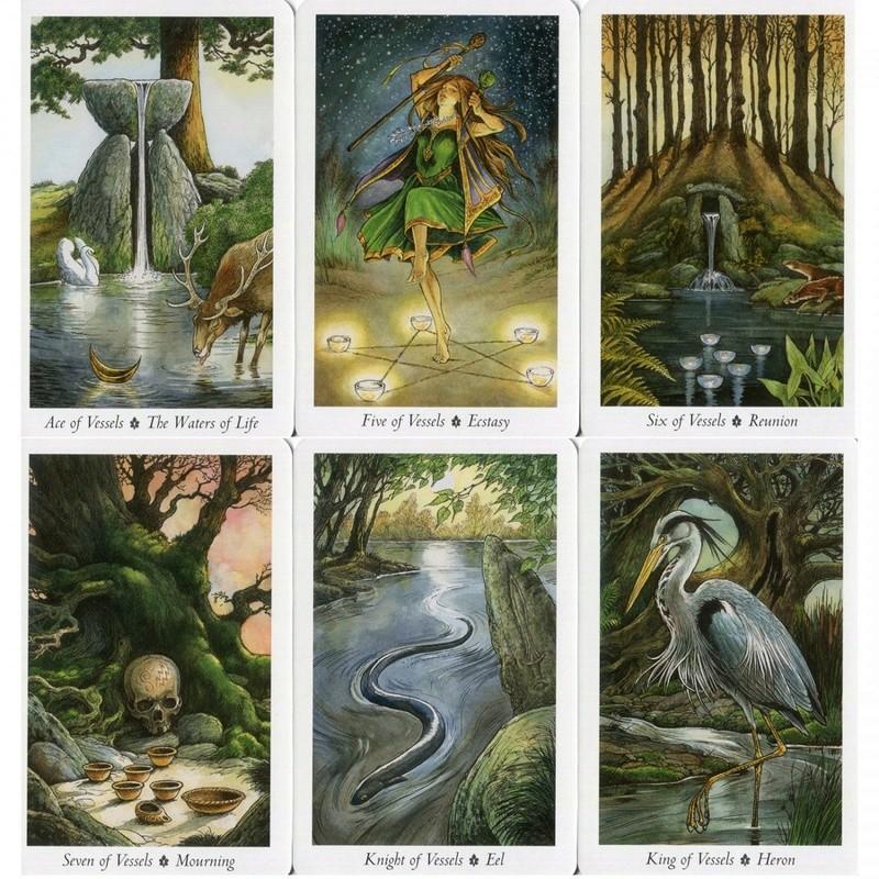 Le Tarot de la Forêt Enchantée  Ditcwd10