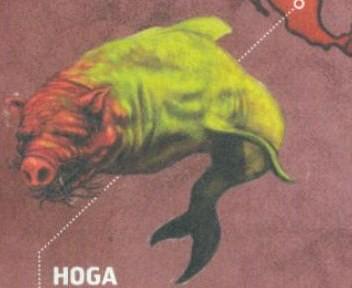 Hoga 118