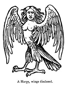 Hárpia Harpy10