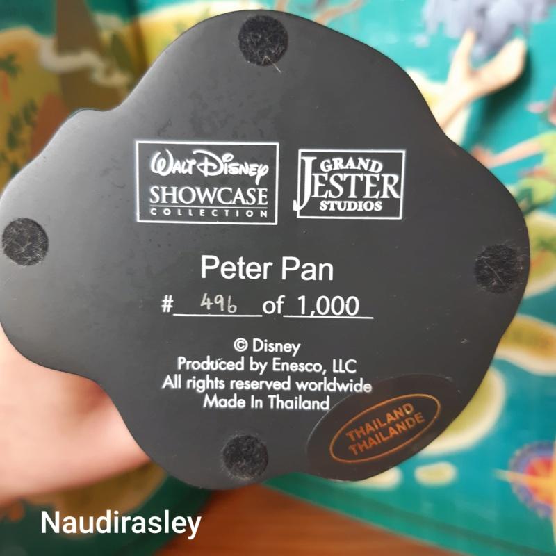 Disney Grand Jester Studios (depuis 2009) - Page 33 20210220