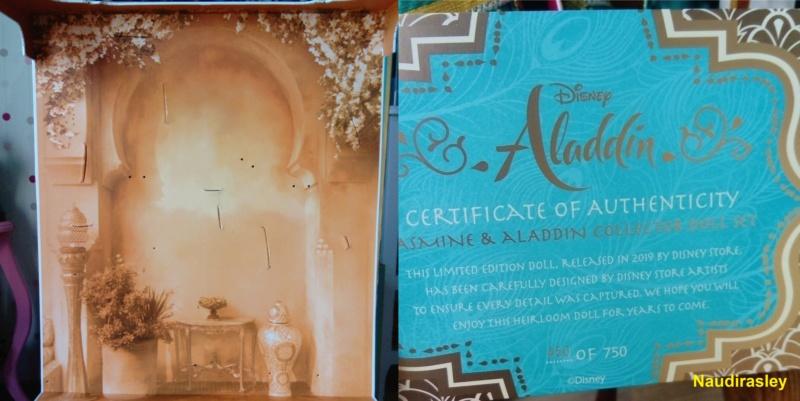 Aladdin (film live) - Page 3 Dsc_6616