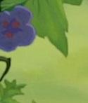 Connaissez vous bien les Films d' Animation Disney ? Empero10