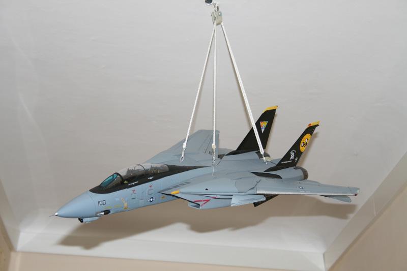 F-14 Tomcat - Pagina 2 Img_2010