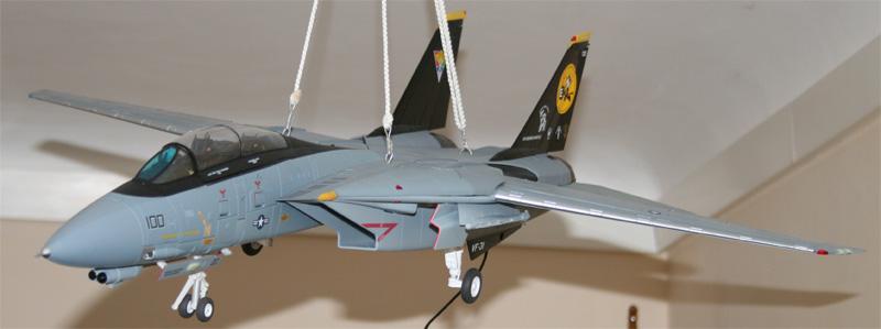 F-14 Tomcat - Pagina 2 Img_2014