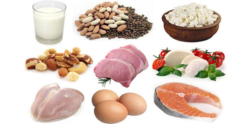 À quoi servent les protéines et où les trouve-t-on ? Protei10