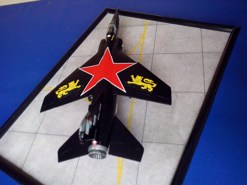 Mirage F-1 CT (Heller) Dissolution Normandie Nièmen 2009  - Page 2 Img_2034