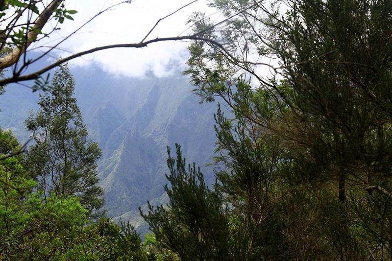 [fil ouvert] Balade à la Réunion  - Page 3 Img_8214