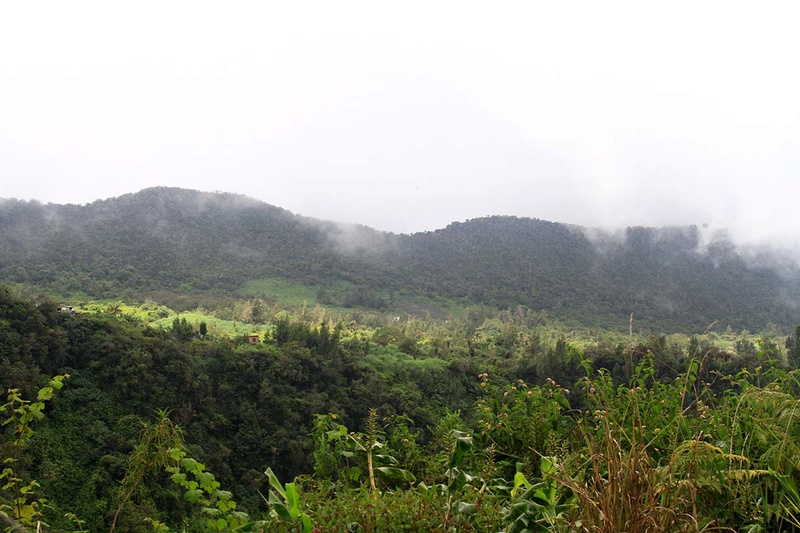 [fil ouvert] Balade à la Réunion  - Page 3 Img_8219