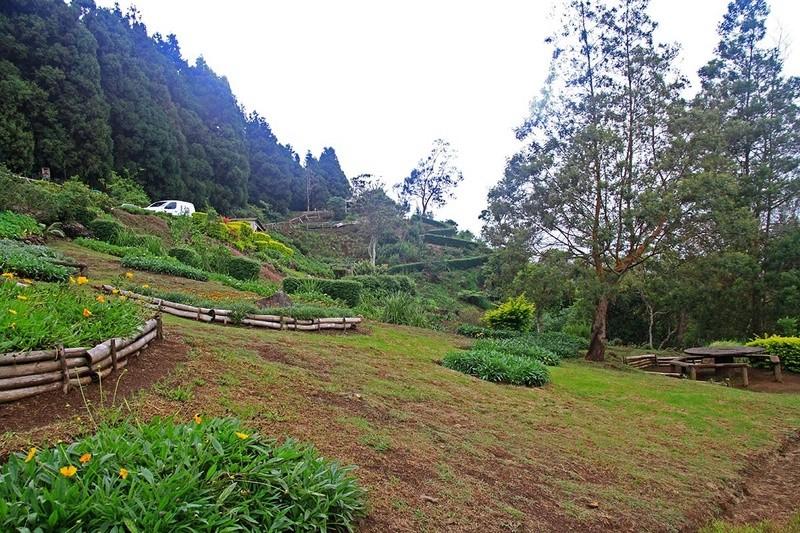 [fil ouvert] Balade à la Réunion  - Page 3 Img_8227