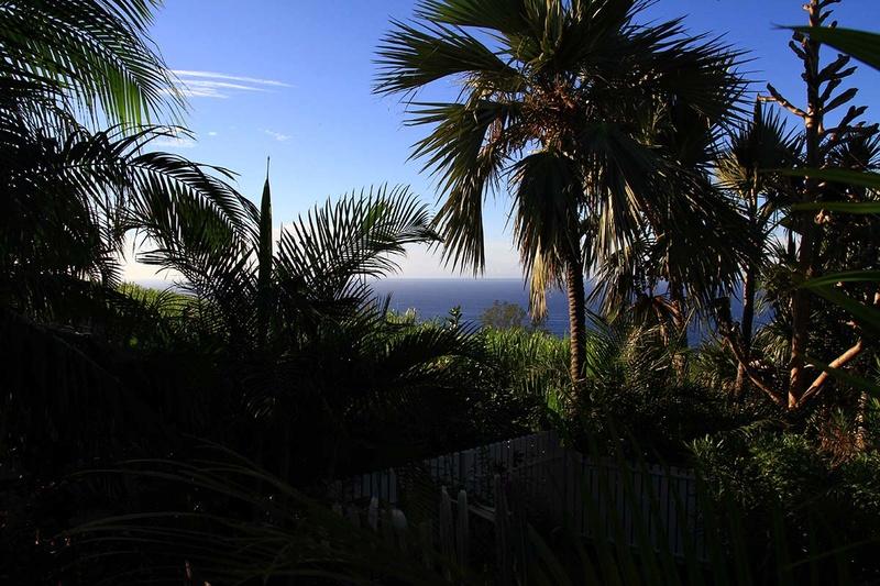 [fil ouvert] Balade à la Réunion  - Page 3 Img_8230
