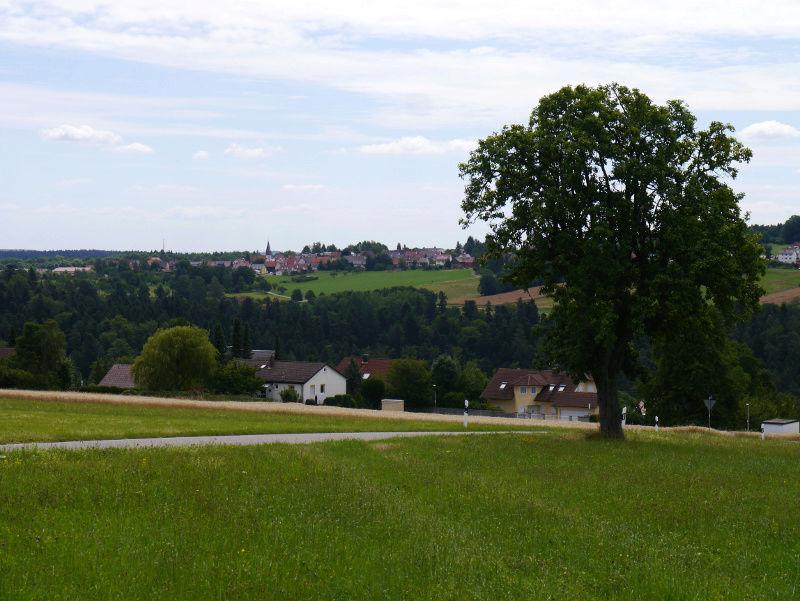 stowa - [Visite] Stowa - Balade en forêt noire P1040622