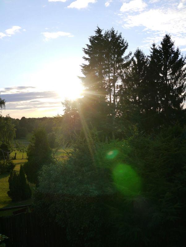 stowa - [Visite] Stowa - Balade en forêt noire P1040638