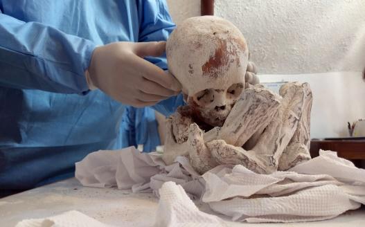 Les extraordinaires reliques au Pérou  - Page 2 Screen14