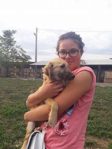 Leetchi. (fourrière de Piatra Neamt) femelle de race croiséé née le 24 Avril 2017 Adoptée par Nadia en Janvier 2018 21766310