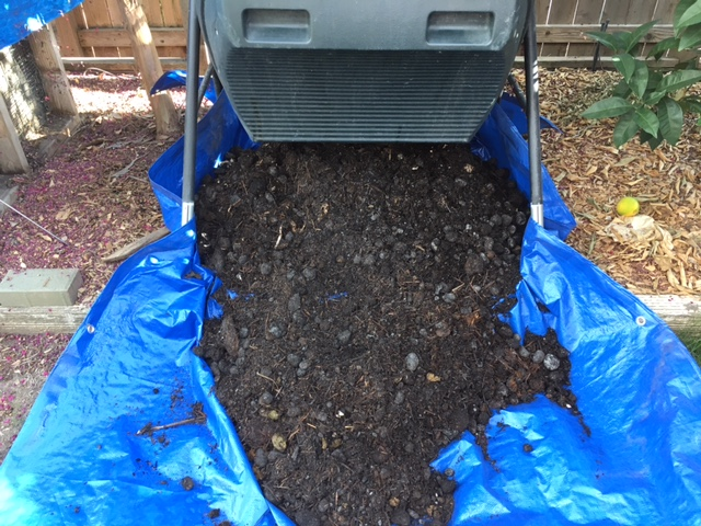 Topics tagged under 3 on Square Foot Gardening Forum Compos22