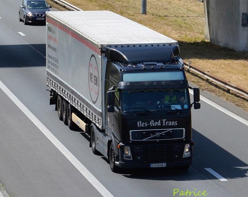 Nes-Rod Trans  (Suceava) 11217
