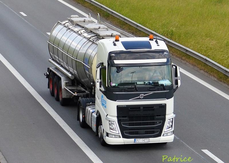 Cotru  (Strzelin + Udenhout, Pays Bas) 23111