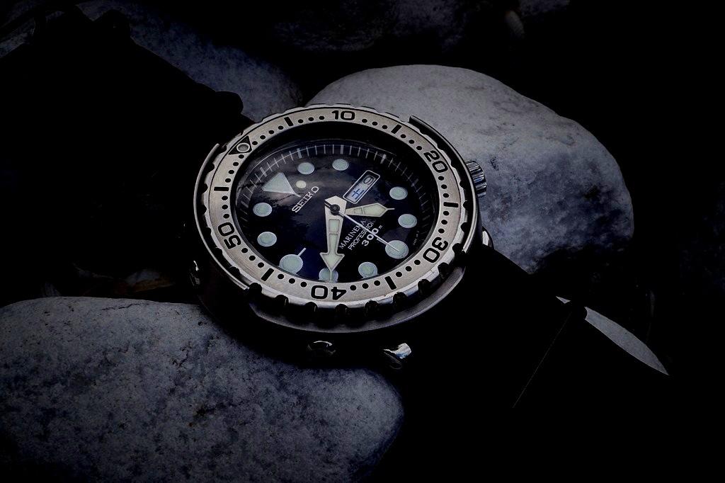 Votre montre du jour - Page 32 Rtdsc026