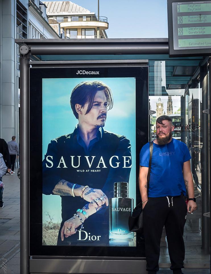 Photos du jour 03/07/2017 Sauvag10
