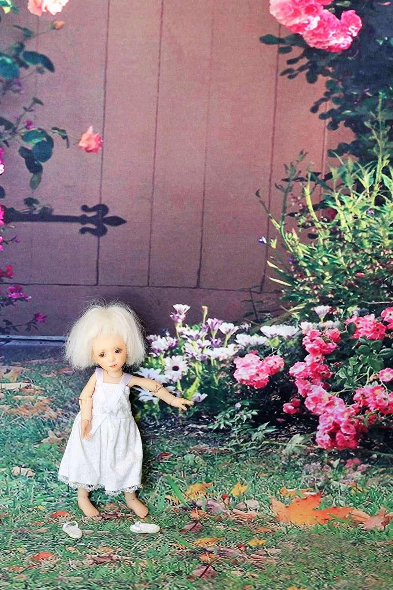 mes deux dolls de LYOUBA Img_9222